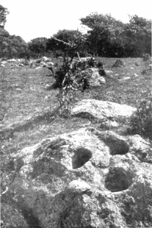 This 1908 image of an undeveloped area in Berkley's Thousand Oaks neighborhood reveals a rock with Indian mortars. There were many scores of Indian sites all over Berkeley, more than anyone, including archeologists, anticipated, most having been recorded only in the past decade or so. There is evidence of Indian occupation from at least 5900 years ago in Berkeley. When the Spanish arrived with the mission system in 1769, the Indians of the East Bay were essentially driven from their homes by the forces of the church and Spanish military. When the Americans arrived, he treatment of Indians in California reached a new low. There were many incidents of slavery, including child slavery in the area around Berkeley. Raids were made to the North and Indians, many women and children, were brought to the area against their will to work on local ranches. By the late 1800s the practice had been modified to the use of Indian children as domestics in houses in the area, including Berkeley.