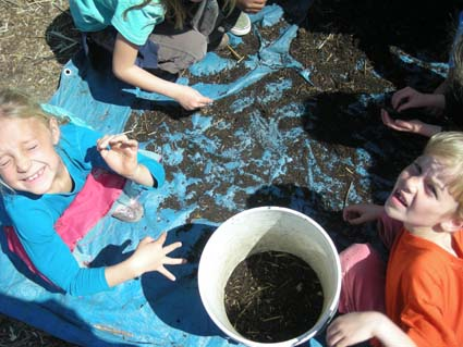 Malcolm X first graders dig for bugs during gardening class Monday.