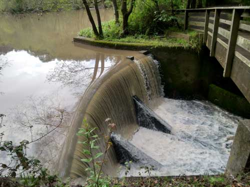 Rainwater reveals whether radiation from Japan is reaching the Bay Area. This is the rain-swelled spillway at Jewel Lake in Tilden Park on March 27.