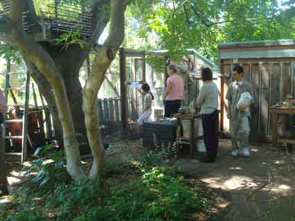 A backyard featuring a multi-chambered chicken coop, live oak tree house, buckeye tree and native and food plantings seemed a favorite on the garden tour.