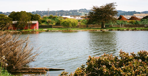 Aquatic Park view
